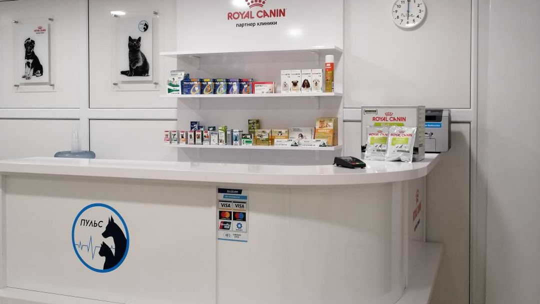Ветеринарная клиника Пульс в Минске